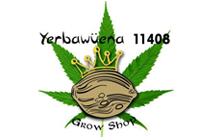 yerbawena